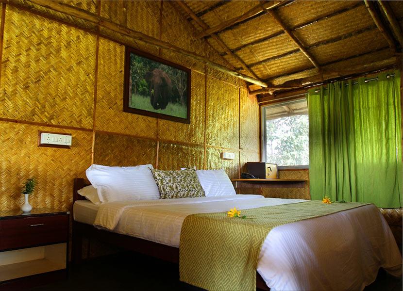 Resorts near Masinagudi