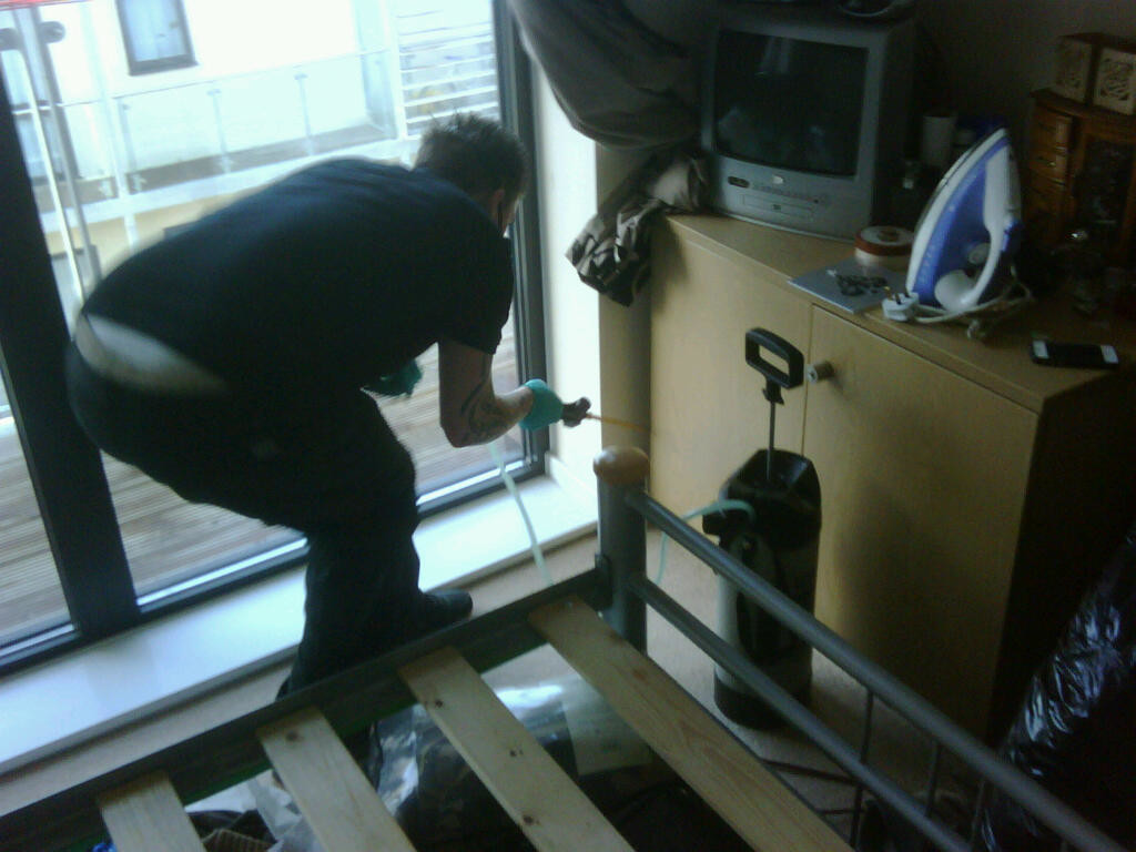 pest removal in London